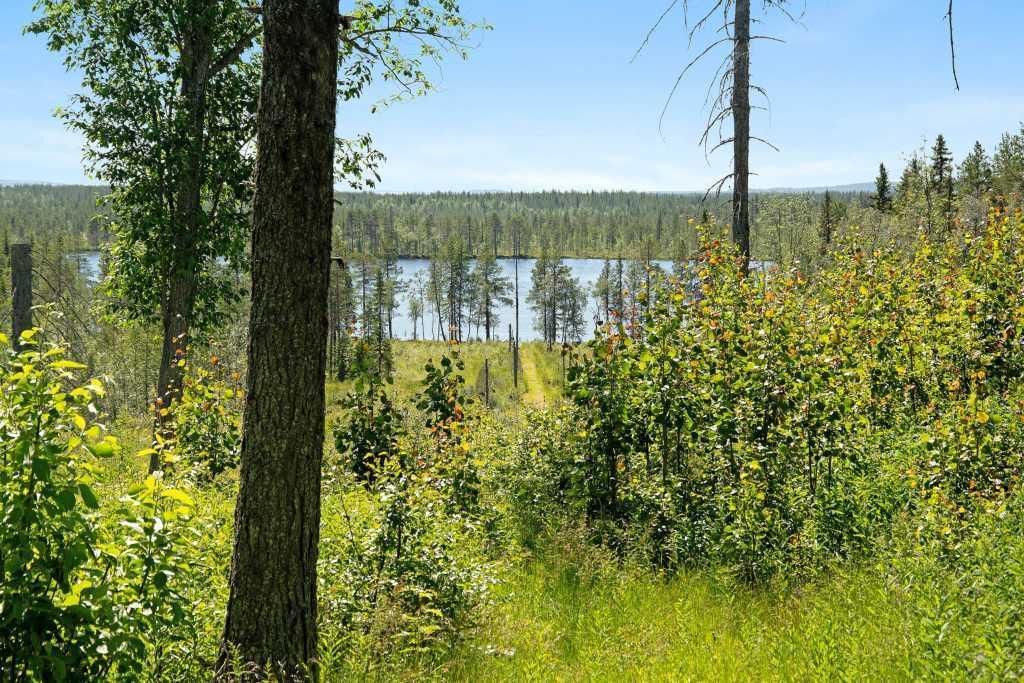 Holmsjö 1